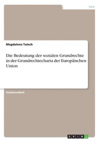 Die Bedeutung der sozialen Grundrechte in der Grundrechtecharta der Europäischen Union