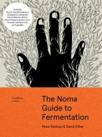 The Noma Foundations of Flavour: Fermentation