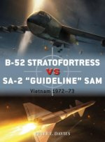 DUE B 52 STRATOFORTRESS VS SA 2
