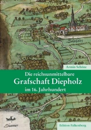 Die reichsunmittelbare Grafschaft Diepholz im 16. Jahrhundert