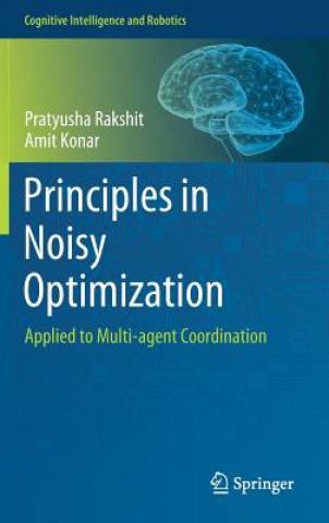 Principles in Noisy Optimization