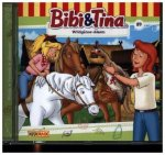 Bibi und Tina 89. Wildgänse-Alarm