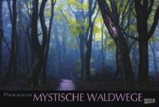 Mystische Waldwege 2019