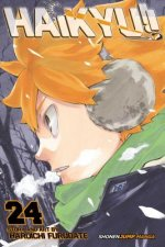 Haikyu!!, Vol. 24