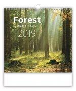 Les - nástěnný kalendář 2019