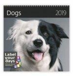 Dogs - nástěnný kalendář 2019