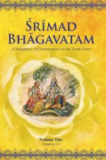 Srimad Bhagavatam Tenth Canto Symphony of Commentaries