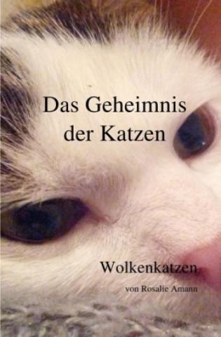 Das Geheimnis der Katzen - Wolkenkatzen