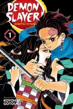 Demon Slayer: Kimetsu no Yaiba, Vol. 1