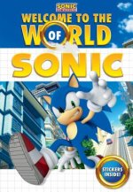 WELCOME TO THE WORLD OF SONIC