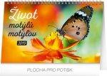 Život motýlů – motýlov C- stolní kalendář 2019