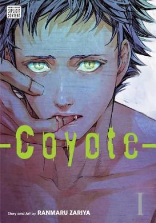 Coyote, Vol. 1