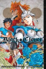 Black Clover, Vol. 12