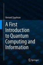 First Introduction to Quantum Computing and Information