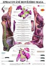 Plakát - Zpracování hovězího masa
