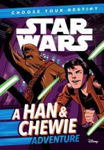 Star Wars: Choose Your Destiny (Book 1) a Han & Chewie Adventure (Book 1)