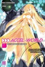 Accel World, Vol. 15 (light novel)