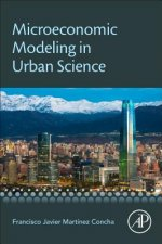 Microeconomic Modeling in Urban Science