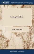 Looking Unto Jesus: A View of the Everlasting Gospel; or, the Soul's Eying of Jesus, as Carrying on the Great Work of Man's Salvation, From First to L