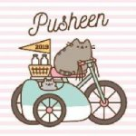 Pusheen Official 2019 Calendar - Square Wall Calendar Format