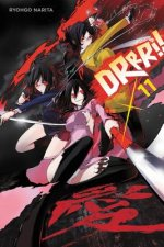 Durarara!!, Vol. 11 (light novel)
