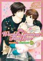 World's Greatest First Love, Vol. 11