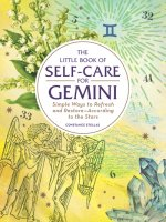 Little Book of Self-Care for Gemini