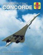 Concorde (Icon)