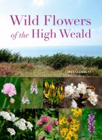 Wild Flowers of the High Weald