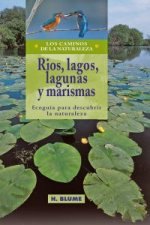 Rios, lagos, lagunas y marismas