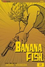 Banana Fish, Vol. 2