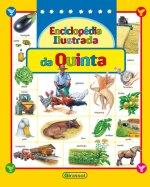 ENCICLOPEDIA ILUSTRADA DA QUINTA
