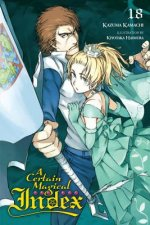 Certain Magical Index, Vol. 18 (light novel)