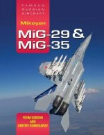 FRA Mikoyan MiG-29 & MiG-35