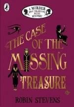 Case of the Missing Treasure