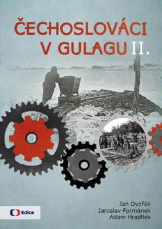 Čechoslováci v Gulagu II.