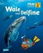 Frag doch mal ... die Maus!: Wale und Delfine