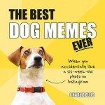 Best Dog Memes Ever