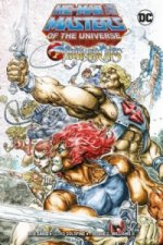 He-Man und die Masters of the Universe / ThunderCats