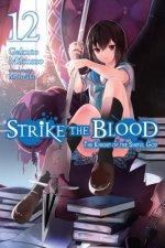 Strike the Blood, Vol. 12 (light novel)