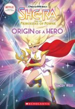 Origin of a Hero (She-Ra Chapter Book #1)