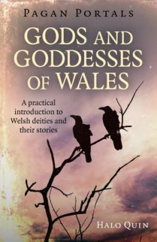 Pagan Portals - Gods and Goddesses of Wales - A practical introduction to Welsh deities and their stories