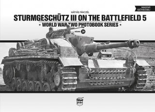 Sturmgeschutz III on the Battlefield 5