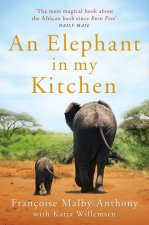 Elephant in My Kitchen