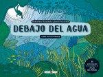 DEBAJO DEL AGUA: LIBRO DE ACTIVIDADES