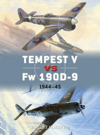Tempest V vs Fw 190D-9