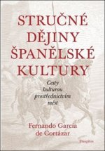 Stručné dějiny španělské kultury