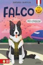 Falco Pies lotniskowy