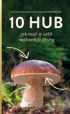 10 hub