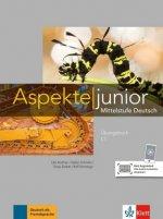 Übungsbuch C1 mit Audio-Dateien zum Download